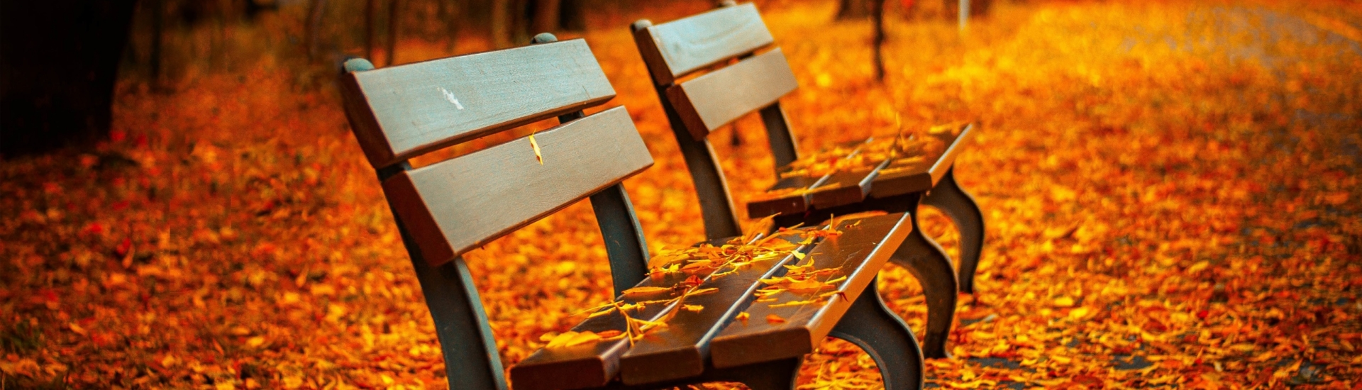 autumn_bench-2560×1440
